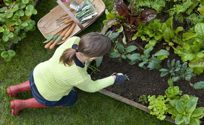make-gardening-a-regular-thing