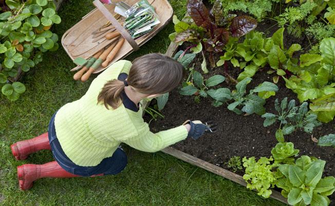 make-gardening-a-regular-thing