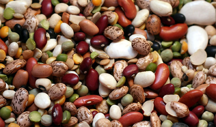 beans-healthy-food