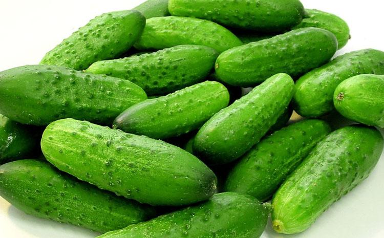 eat Cucumbers