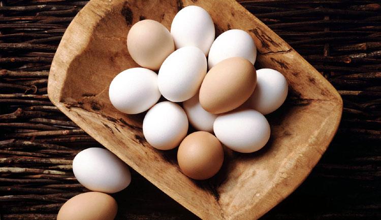 eggs-brain-power