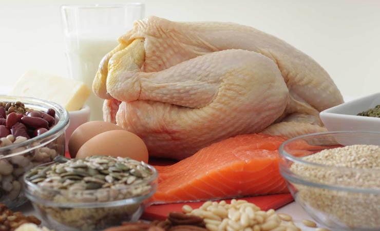 protein-rich-diet