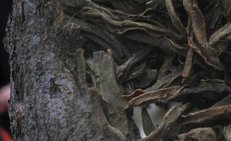 black-tea-leaves-and-cherry-tree-bark-hair-dye