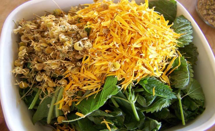 calendula-and-chamomile