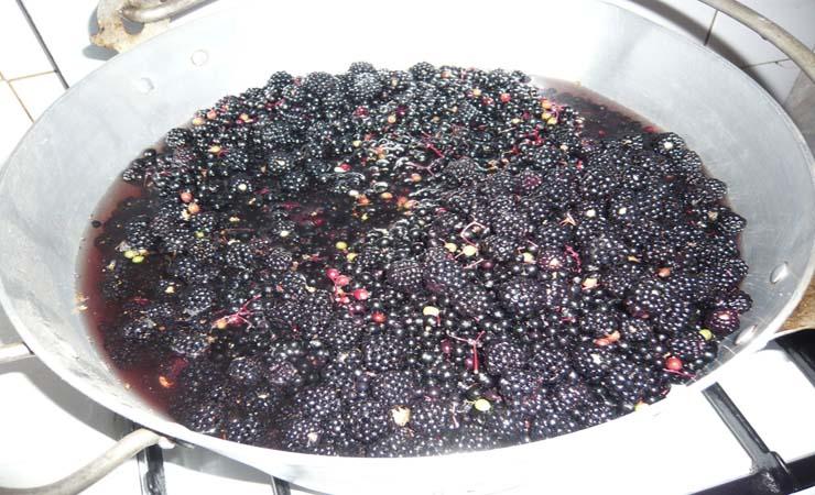 elderberries-and-vinegar