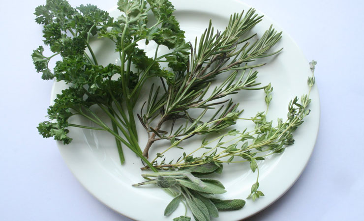 nettles-sage-and-rosemary