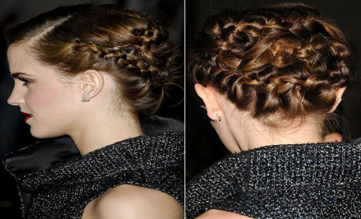 Crazy-Braided-Updo