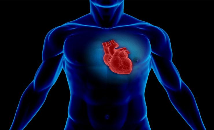 REDUCE HEART DISEASE