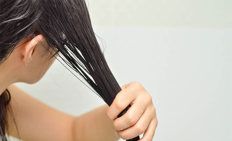 Honey Conditioner For Dry Hair