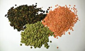 lentils..6